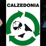 calzedoniaa